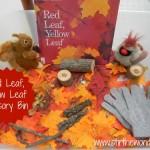 Red Leaf, Yellow Leaf Sensory Bin | Stir the Wonder #kbn #sensory #fall #autumn #redleafyellowleaf