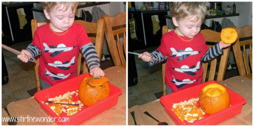 Pumpkin Collage