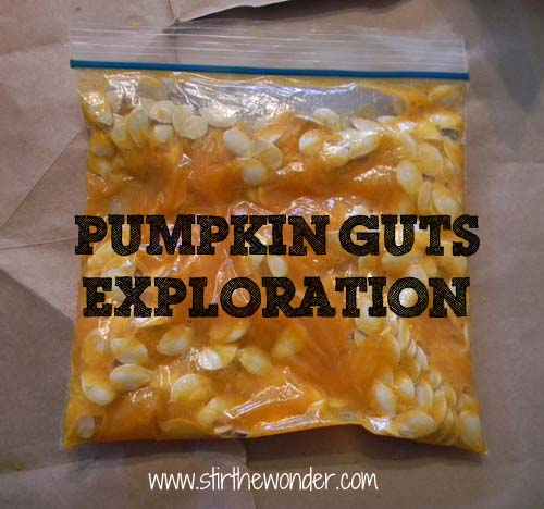 PumpkinGutsExploration
