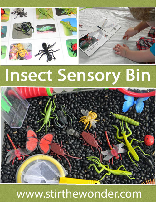 Insect Sensory Bin | Stir the Wonder #kbn #sensory #insects #bugs