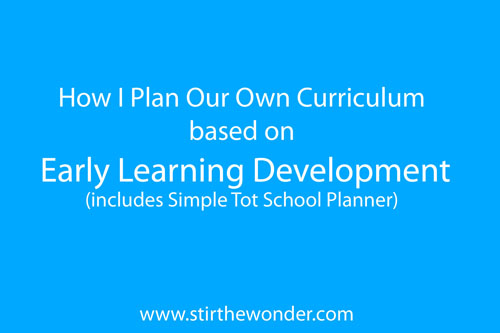 Developing Our Own Curriculum