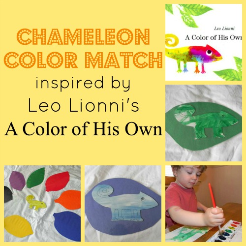 Chameleon Color Matching