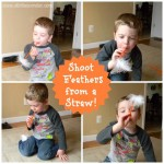 Shoot Feathers from a Straw! | Stir the Wonder