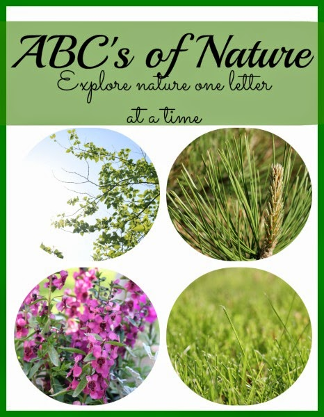 ABC's+of+Nature