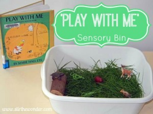 play with me sensory bin 2