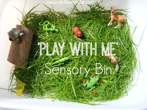 play with me sensory bin 3