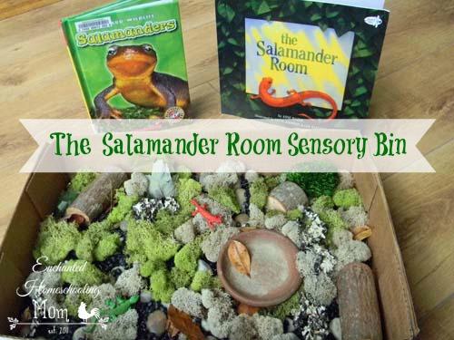 The Salamander Room Sensory Bin - Enchanted Homeschooling Mom