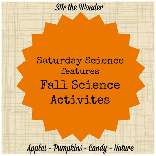 Saturday Science features Fall Science Activities | Stir the Wonder #kbn #science #fall #preschool