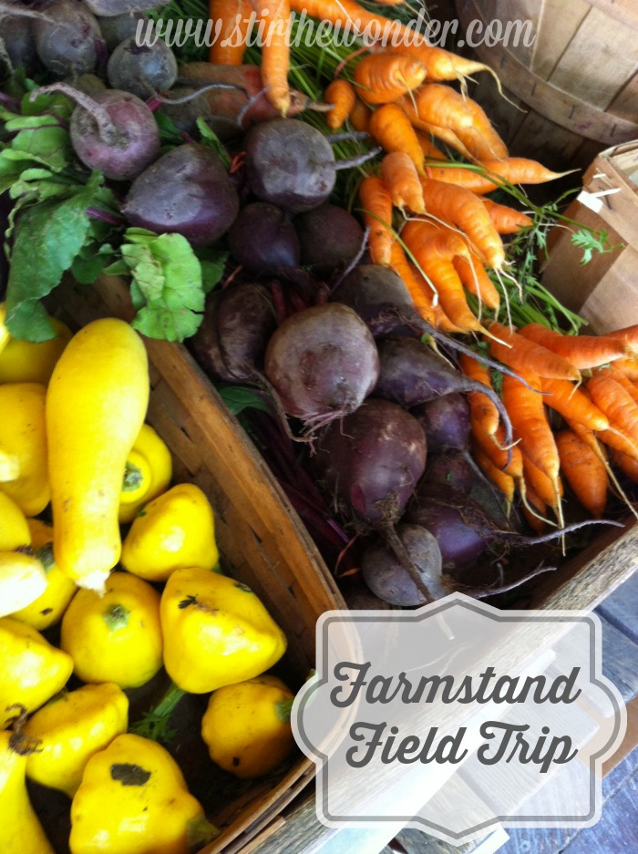 Farmstand Field Trip | Stir the Wonder