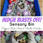 Hedgie Blasts Off! Sensory Bin | Stir the Wonder #poppinsbooknook #kbn @#kidlit #sensorybin
