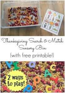 Thanksgiving Search & Match Sensory Bin
