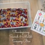 Thanksgiving Sensory1_edited-1