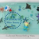 The Octonauts Water Sensory Play Activity