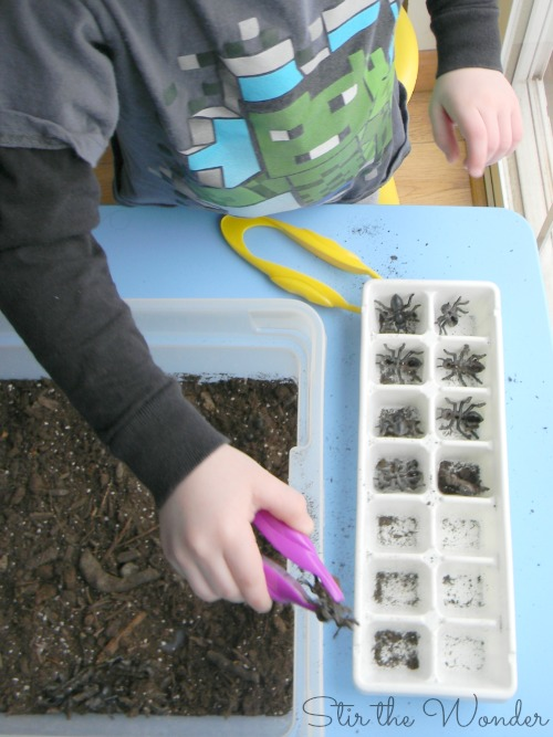 Counting Ants Fine Motor Sensory Game