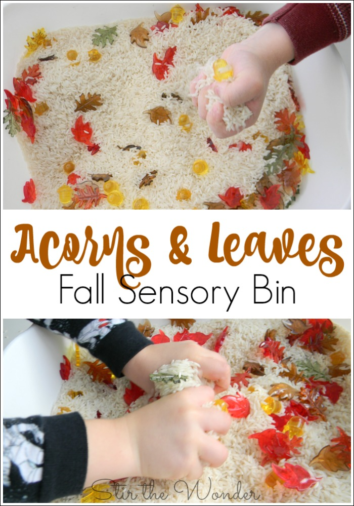 Acorns & Leaves Fall Sensory Bin will keep your kids busy for an afternoon and can be used to practice math skills!
