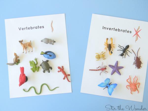 Sorting vertebrates & invertebrates 2