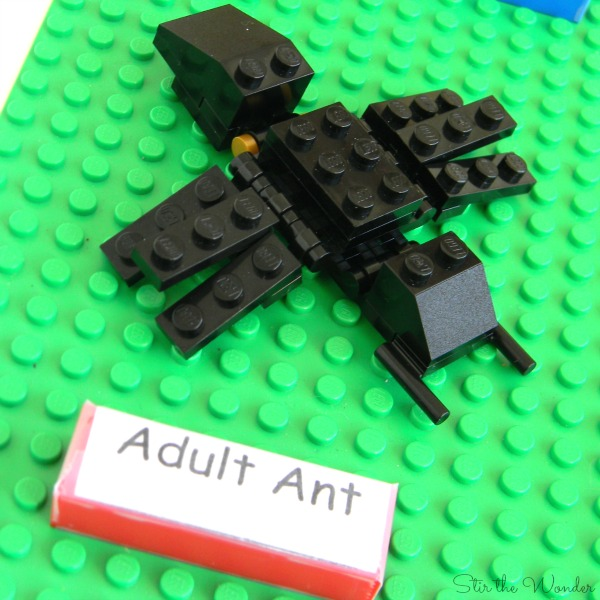 LEGO ant