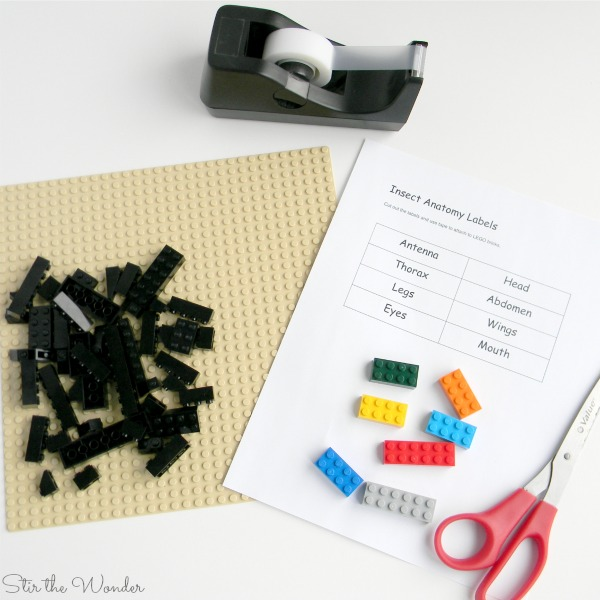 Supplies for LEGO Insect Anatomy labeling activity