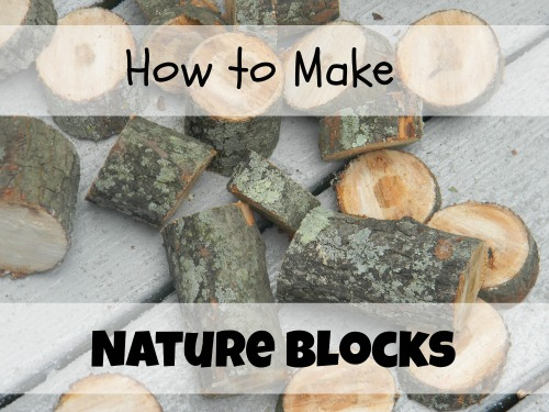 Nature Blocks