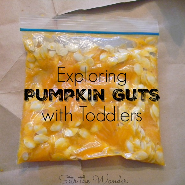 Pumpkin Guts Sensory Bag