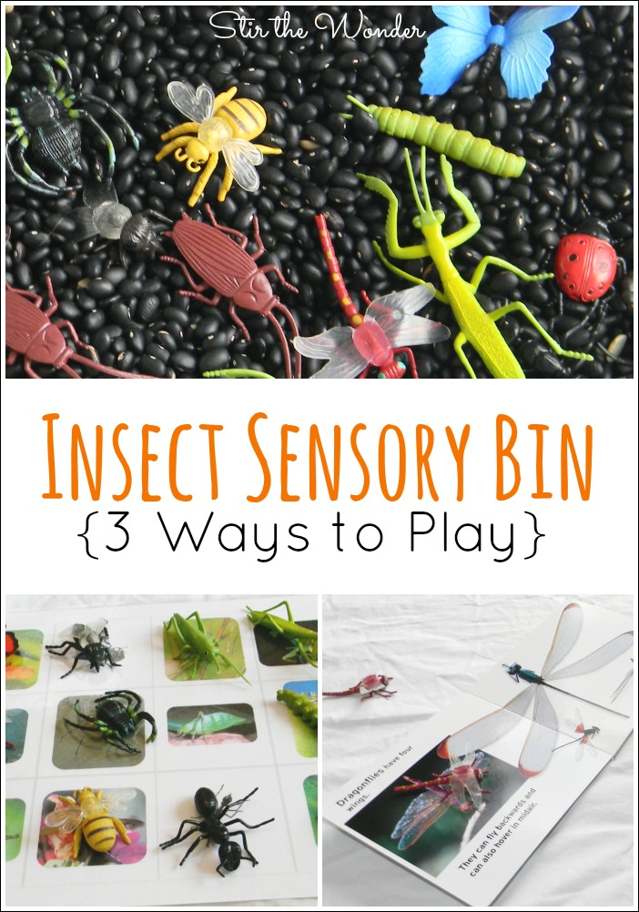 An Insect Sensory Bin with 3 Ways to Play is the perfect way to introduce toddlers to different bugs! | Stir the Wonder