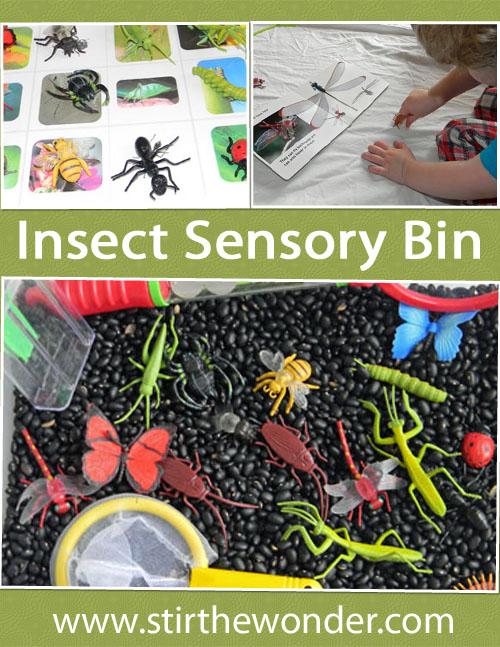 Insect Sensory Bin   Stir the Wonder #kbn #sensory #insects #bugs