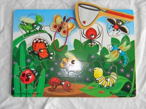 Insect Tot Trays