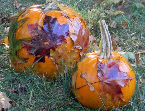 nature decorated pumpkins
