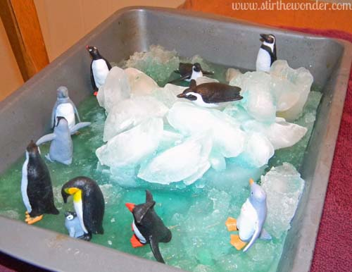 ice penguins 5