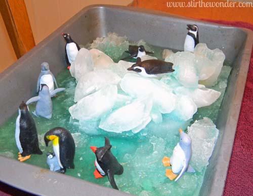 Snow Amp Ice Penguin Small World Stir The Wonder
