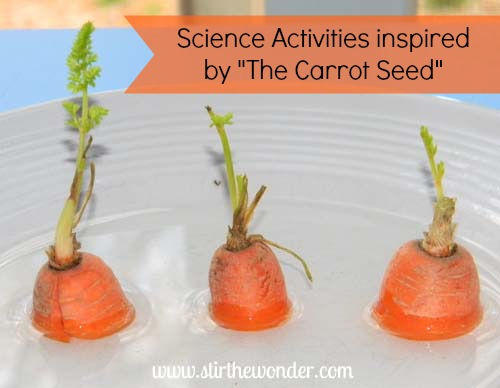 Science Activities inspired by The Carrot Seed