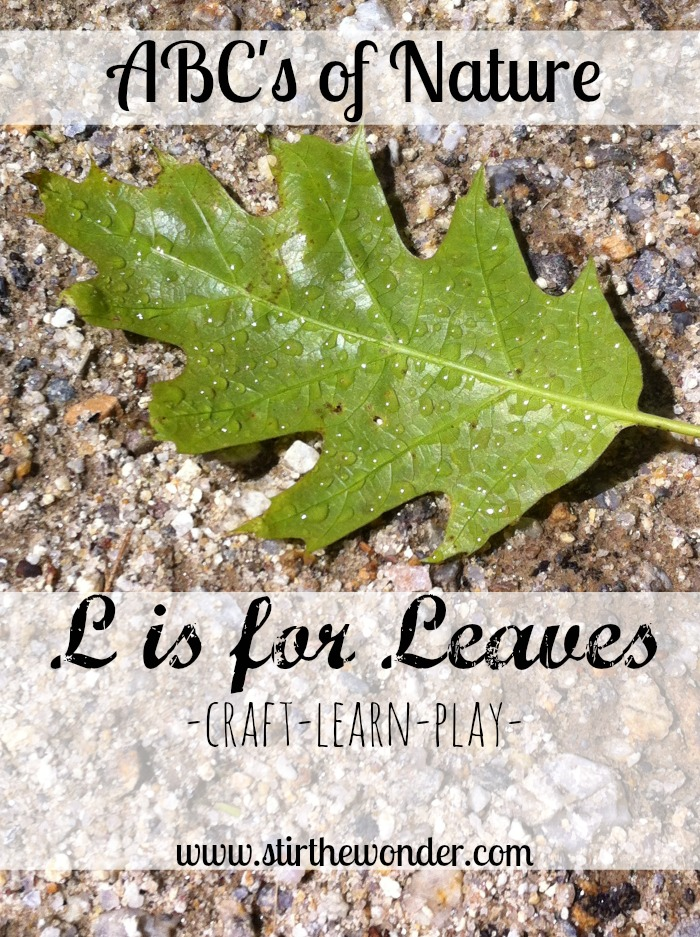 ABCs of Nature: L is for Leaves