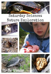 Saturday Science: Nature Exploration & Book Suggestions | Stir the Wonder #kbn #childledlearning #nature