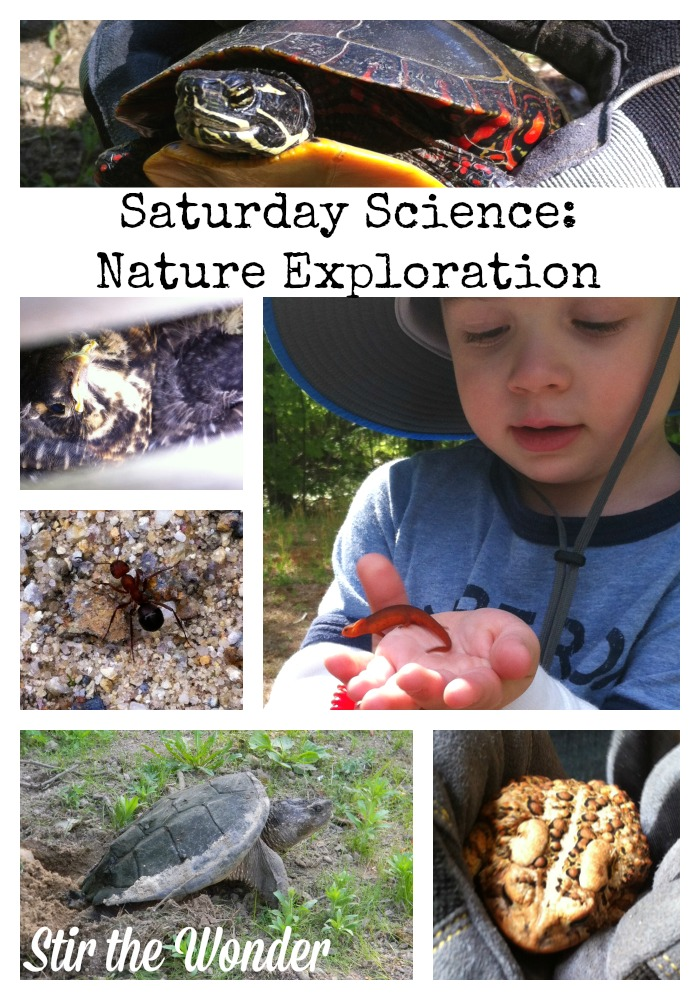Saturday Science: Nature Exploration & Book Suggestions