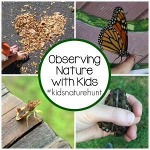 Observing Nature with Kids on Instagram #kidsnaturehunt