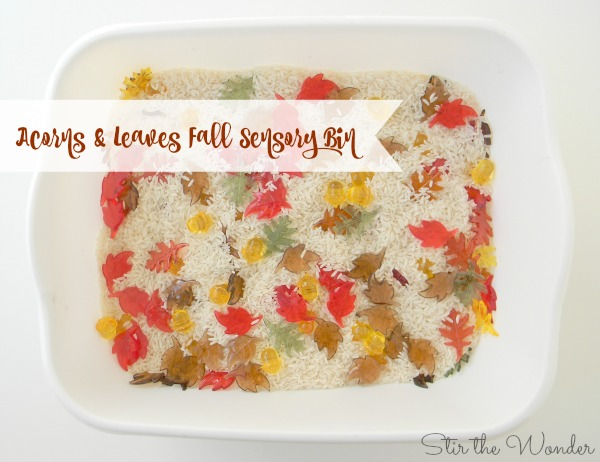 Acorns and Leaves Fall Sensory Bin