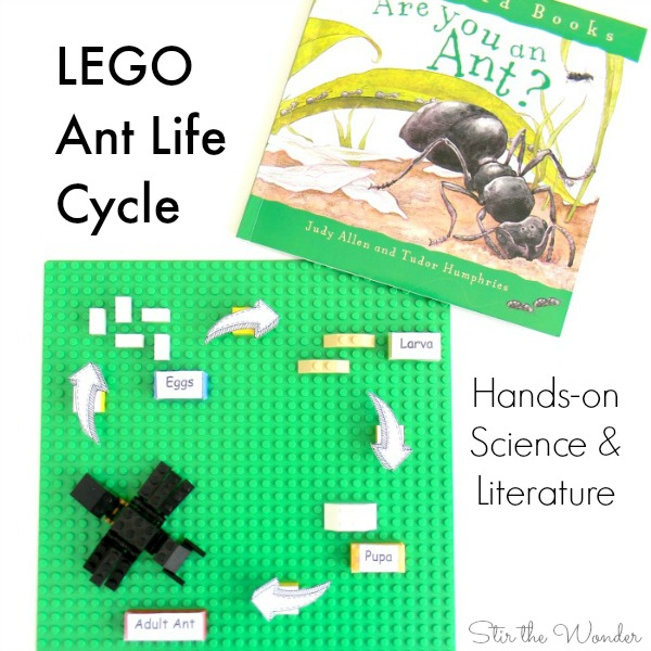 Learning with LEGO: Ant Life Cycle, Hands-on science and literature