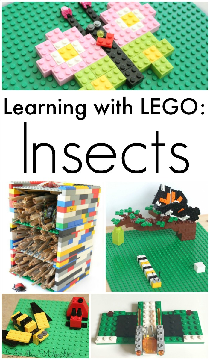 Learning with LEGO: Insects