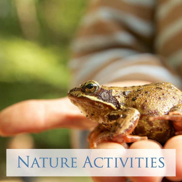 Nature Activities for Play and Learning
