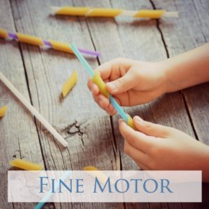 Here you will find over 100 fine motor activities to encourage this important skill in your toddler or preschooler!